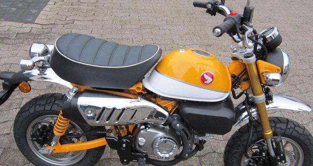 Old but Gold! Die neue Honda Monkey ab jetzt bei uns!
